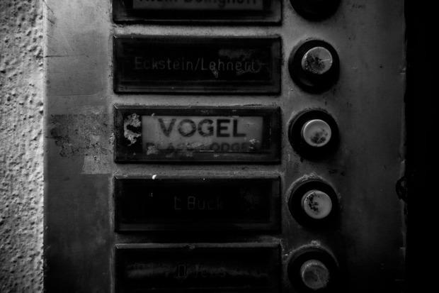 Steven Vogel, Amburgo.