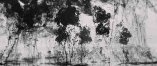 """Visitor"", Godfrey Reggio, 2014"