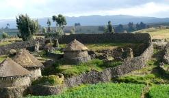 """L'area Guassa dei Menz negli altopiani centrali del Etiopia ha un agestione delle risorse a base comunitaria conosciuto come il sistema """"Qero""""."""