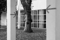 M1_Baum